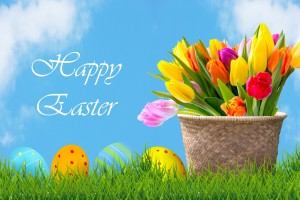 easter-eggs-and-flowers-background